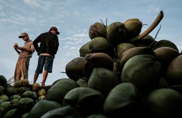 Stacks Of Coconuts Forced Perspective Vietnam