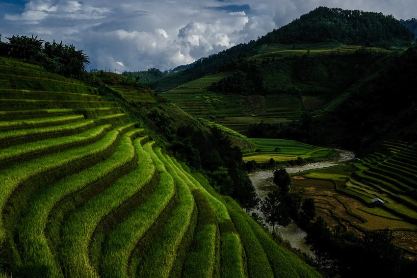 A landscape photo of Mu Cang Chai during Pics of Asia photography tour