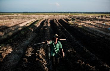 Portrait Photography - Farmer Works The Rice Fields