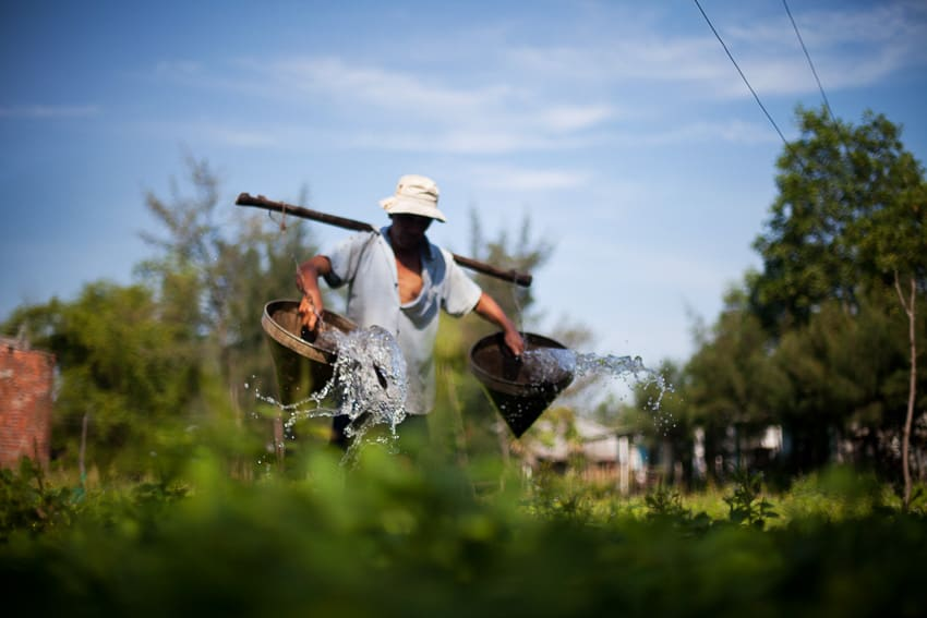 A farmer waters his crops in a dynamic photograph taken on Hoi An Photo Tours